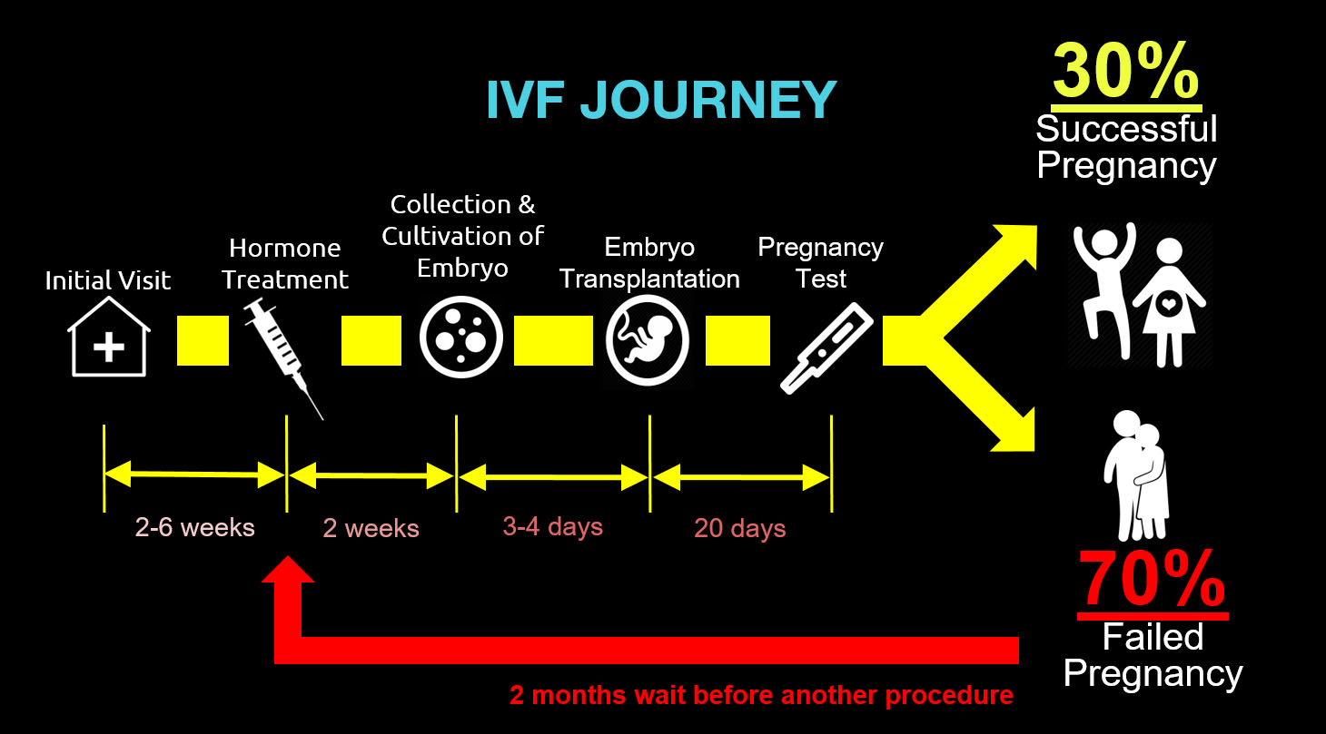 The IVF Journey